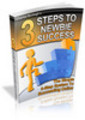 3 steps to newbie success